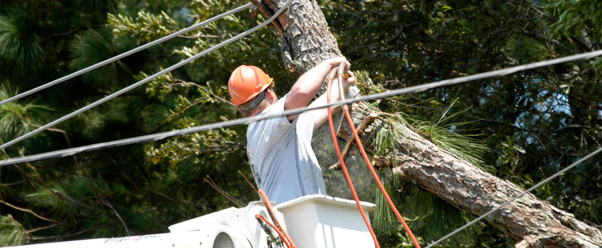 Utility Worker Responding to a Post-Storm Incident